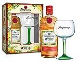 Tanqueray Sevilla mit Copa-Glas VAP Gin (1 x 70 Cl)