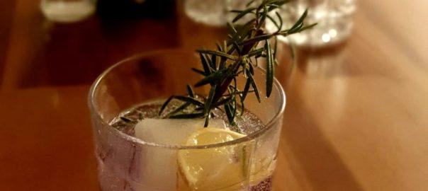 Gin Tonic mit Illusionist Gin