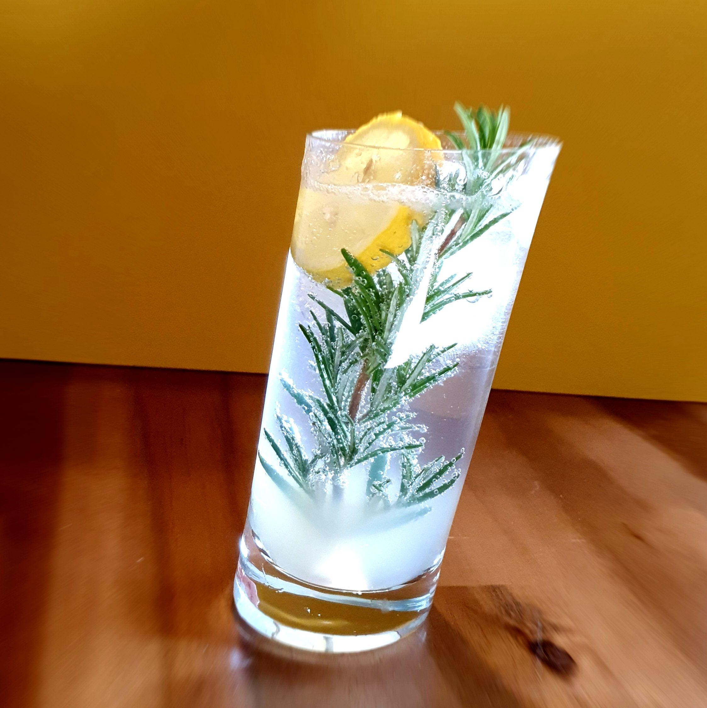 Gin Fizz mit Rosmarinzweig by Gin-kauf.de